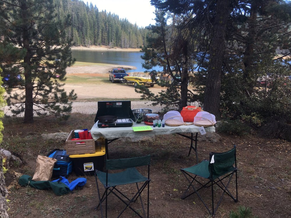 Bucks Lake Campground: 280 Bucklin Rd, Bucks Lake, CA