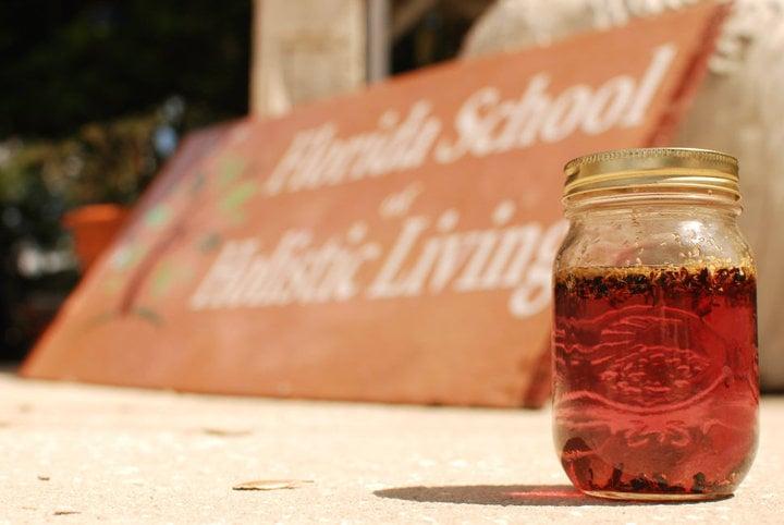 Florida School of Holistic Living