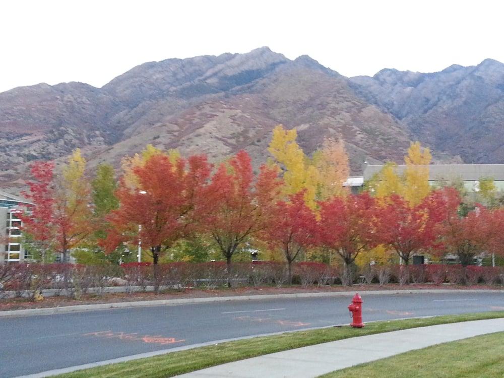 Regence Bluecross Blueshield of Utah - 2890 E Cottonwood Pkwy ...