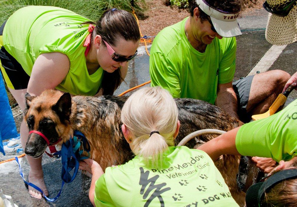 Pine Meadow Veterinary Clinic: 550 W Nine Mile Rd, Pensacola, FL