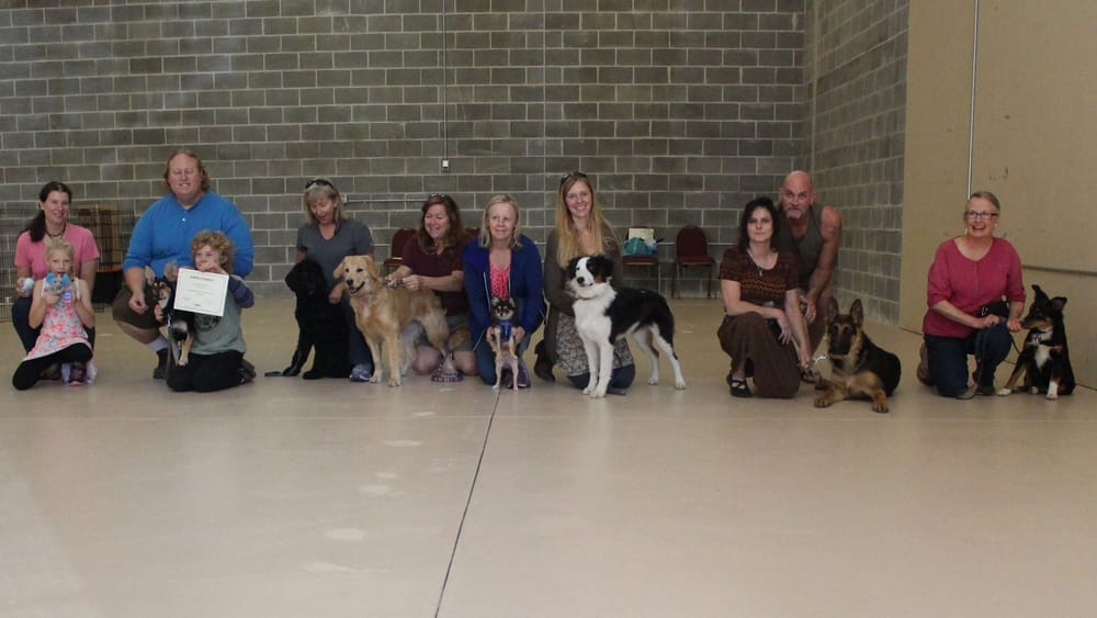 Go Rogue Dog Training Center