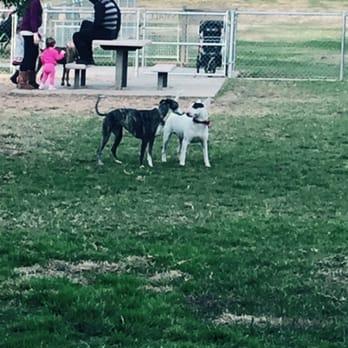 Redlands Dog Park Redlands Ca