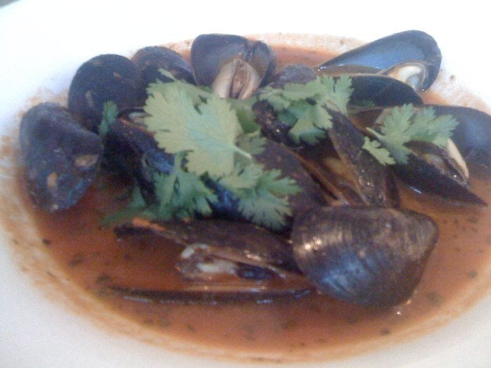 Mussels in tomato cilantro broth yelp for Passion fish monterey