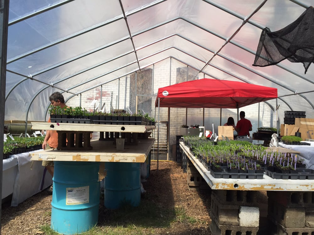 Garden Dreams Urban Farm & Nursery