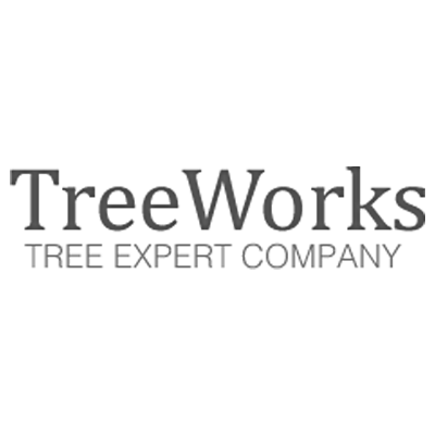 Treeworks: 6 Meadow Dr, Egg Harbor Township, NJ