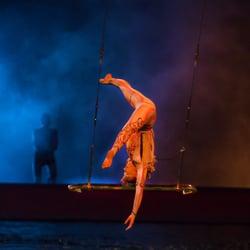 Cirque du nude soleil