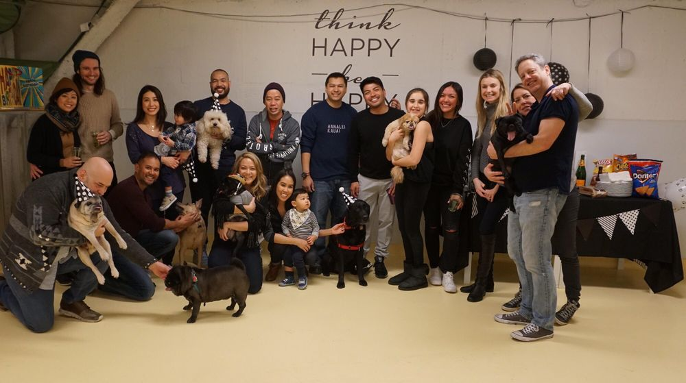 Puppy Parties NYC