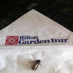 Hilton Garden Inn Tuscaloosa 14 Reviews Hotels 800 Hollywood