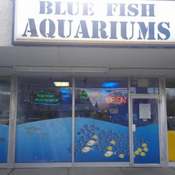 Blue fish aquariums local fish stores 5412 mayfield rd for Local fish stores