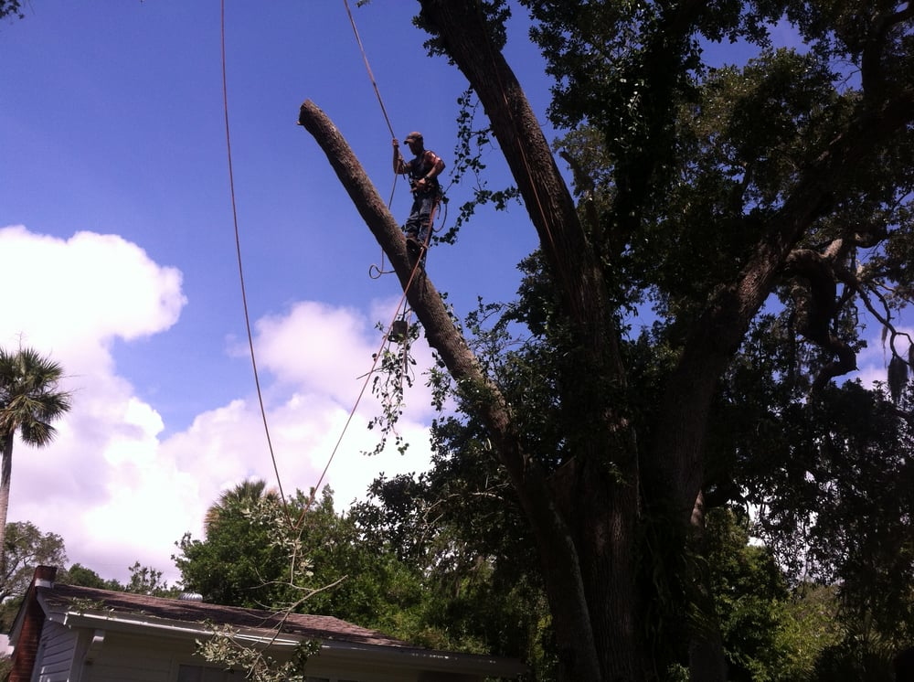 Foster's Lawn and Tree Service