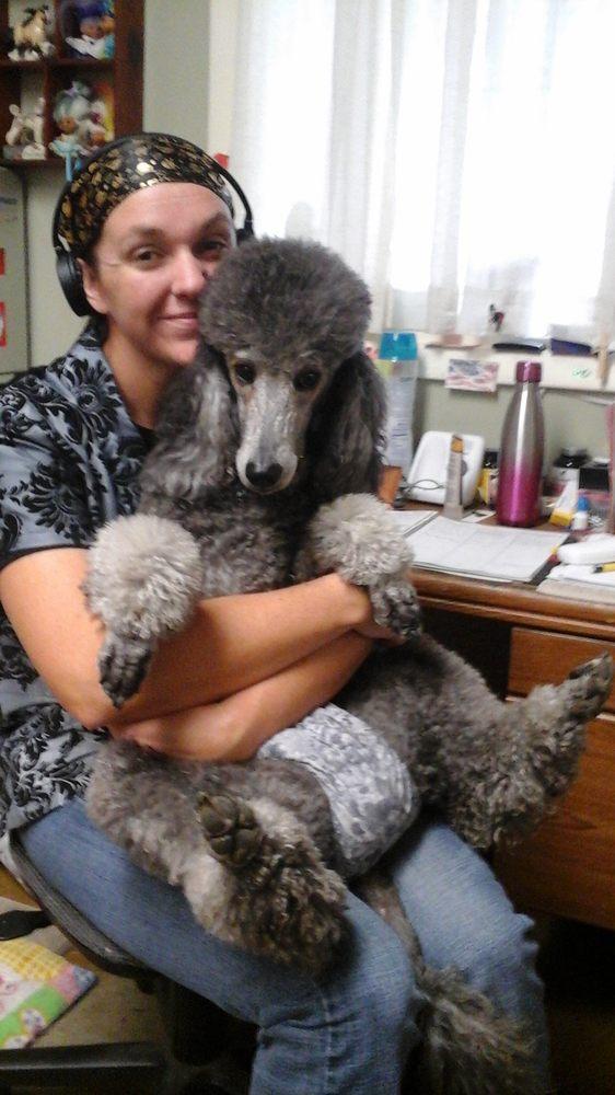 Midge's Pet Grooming: 2410 17th St, Greeley, CO