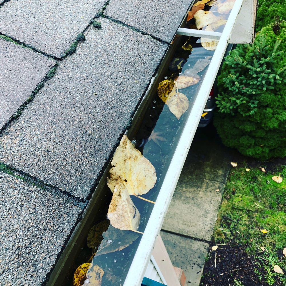 Gutter Cleaning / Clogged downspout Salmon Creek Area - Yelp