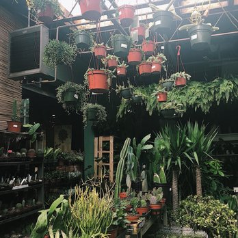 Mahoney's Garden Centers - 2019 All You Need to Know BEFORE