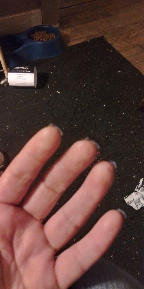 Solar Nails: 1323 24th St, Port Huron, MI
