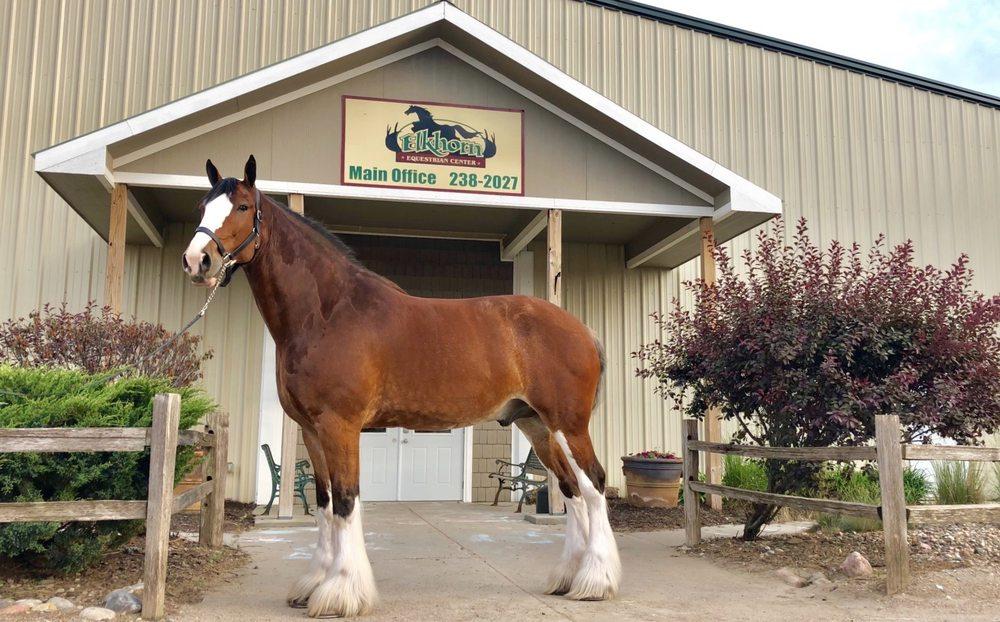 Elkhorn Equestrian Center: 20915 Bennington Rd, Elkhorn, NE