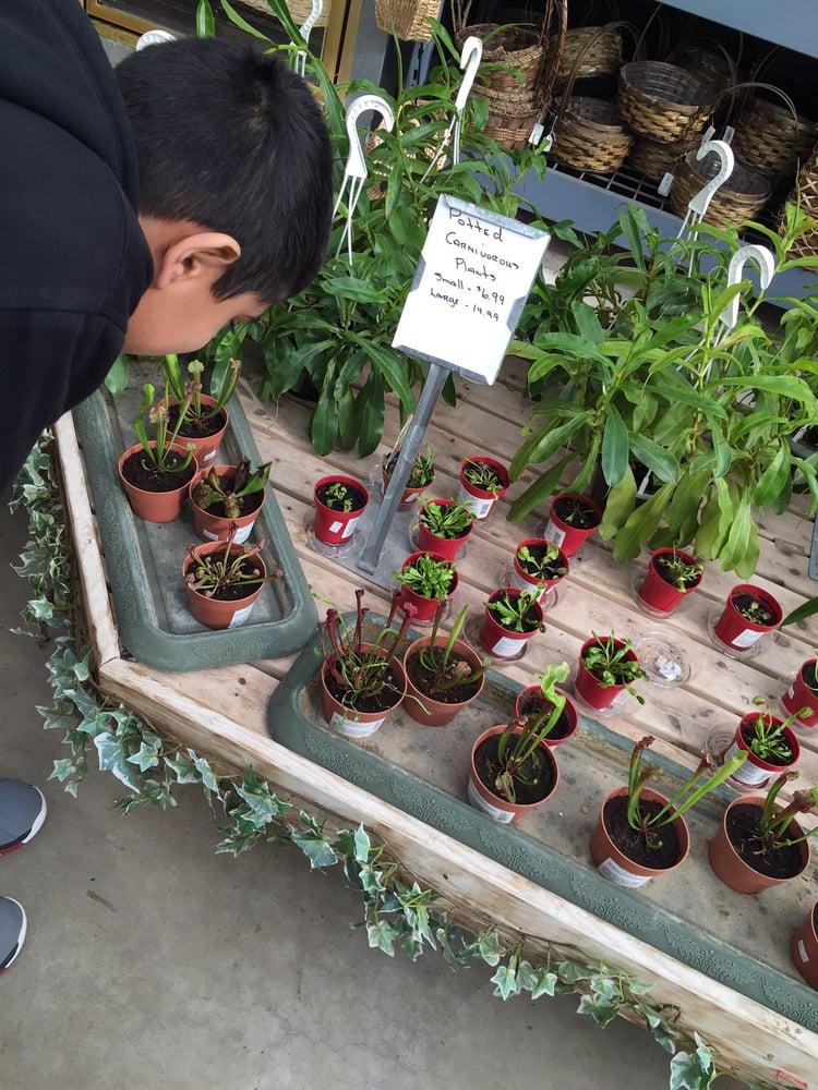 Dan Schantz Greenhouse & Cut Flower Outlet: Lehigh St At I 78, Allentown, PA