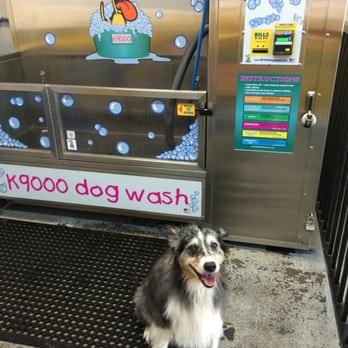 Self Service Dog Wash Rohnert Park