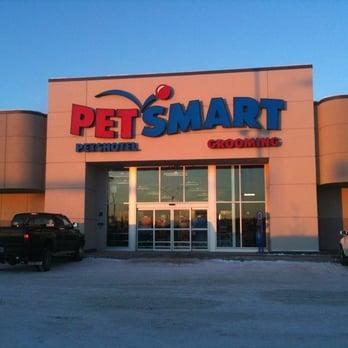 Petsmart Dog Hotel Reviews