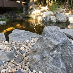 Photo Of Hashimoto Nursery Los Angeles Ca United States Pond By Lance