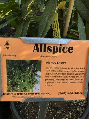 California Tropical Fruit Tree 2081 Elevado Rd Vista, CA