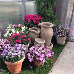Photo Of Syngenta Flowers   Gilroy, CA, United States