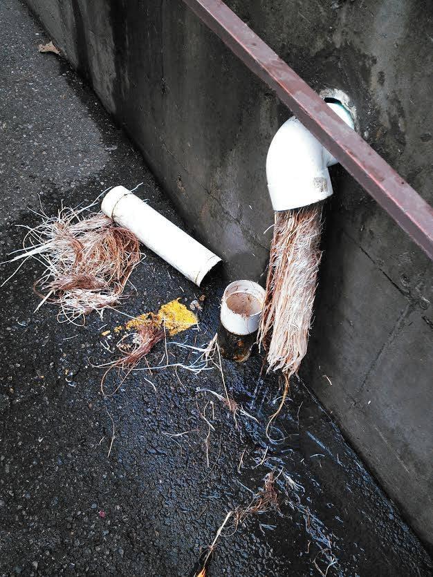 Action Drain & Plumbing: 5408 N Freya St, Spokane, WA