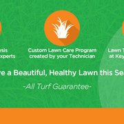 All Turf 10 Photos Amp 17 Reviews Landscaping
