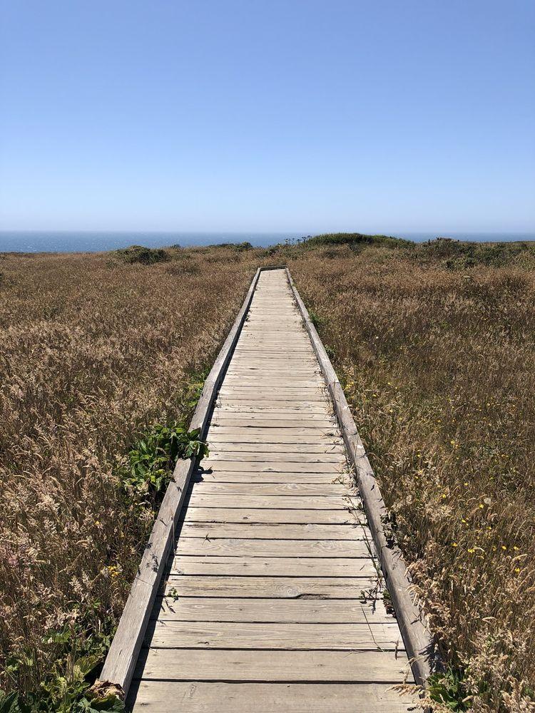 Sonoma Coast State Park: 9530 Goat Rock Rd, Jenner, CA