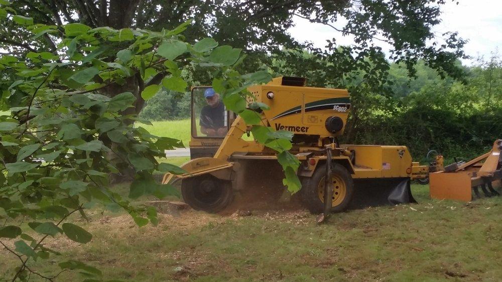 Carolina Tree Service: 2233 Bellemont Alamance Rd, Liberty, NC