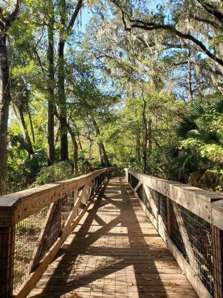 Bivens Arm Nature: 3650 S Main St, Gainesville, FL