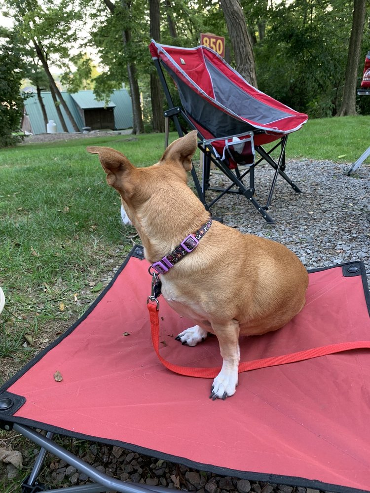 Country Acres Campground: 20 Leven Rd, Gordonville, PA