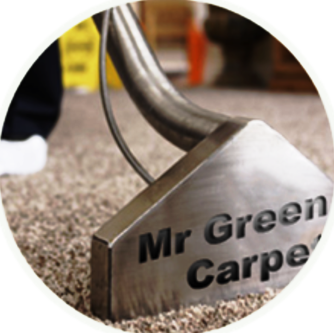Mr. Green Carpet Care