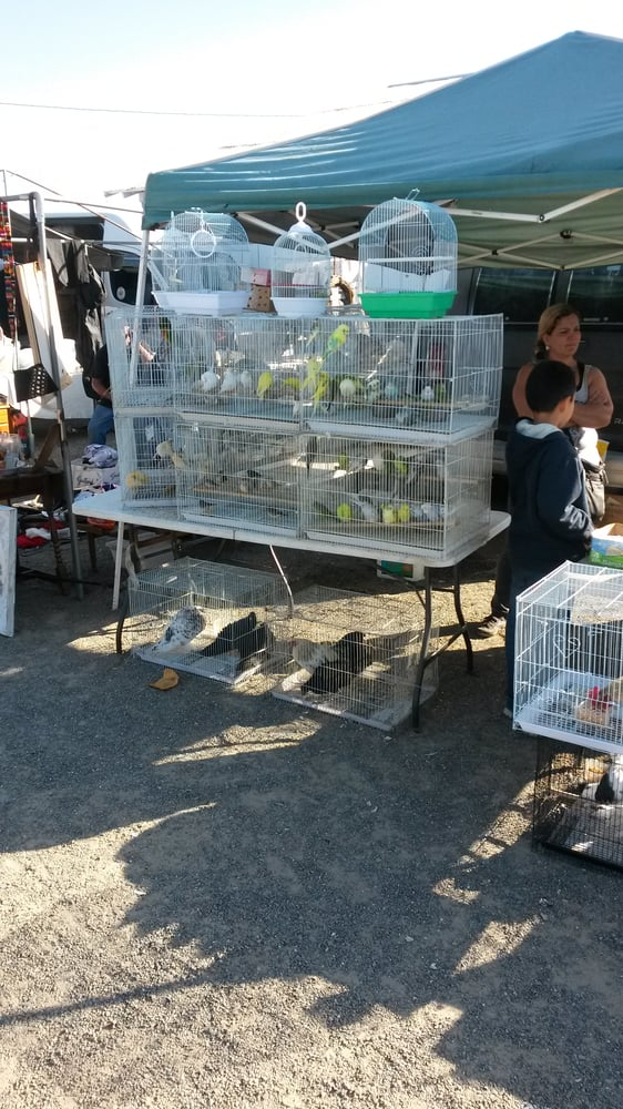 Turlock Flea Market