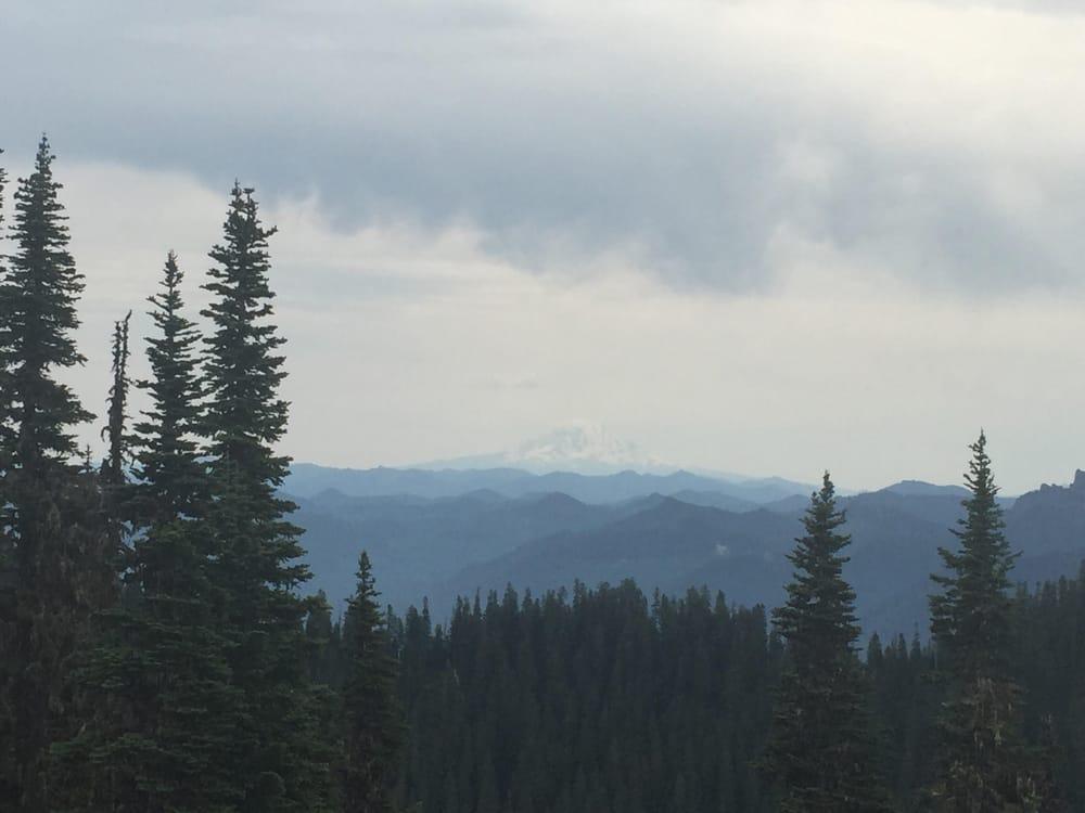 Mount Beljica: Mount Rainier Area, Ashford, WA