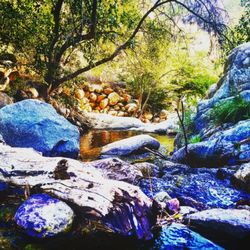 Kern River - 2019 All You Need to Know BEFORE You Go (with Photos