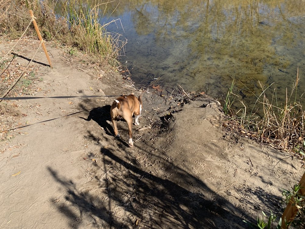 Santa Margarita River Trail