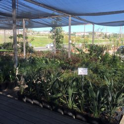 Photo Of Loma Vista Nursery 2 Yorba Linda Ca United States Going