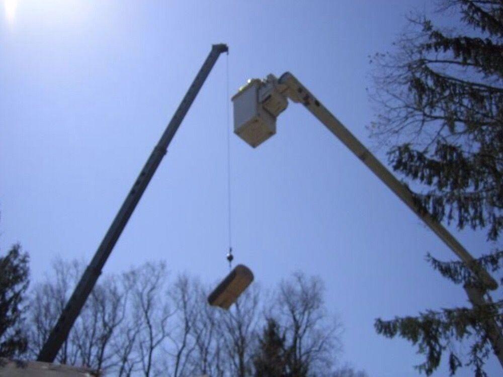 Takoma Tree Experts: 2310 Cool Spring Rd, Hyattsville, MD