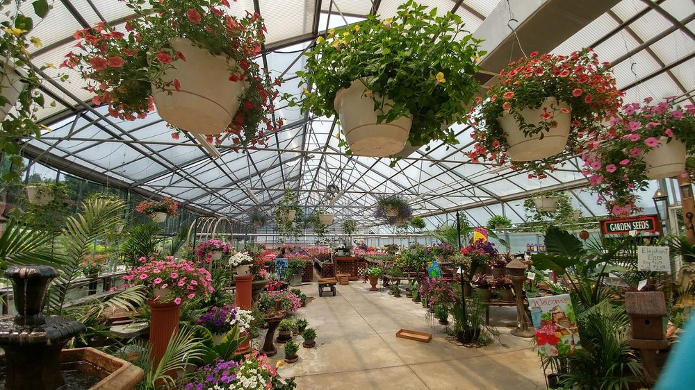K C  Hardin Greenhouse & Garden Center: 123 Greenhouse Rd, South Shore, KY