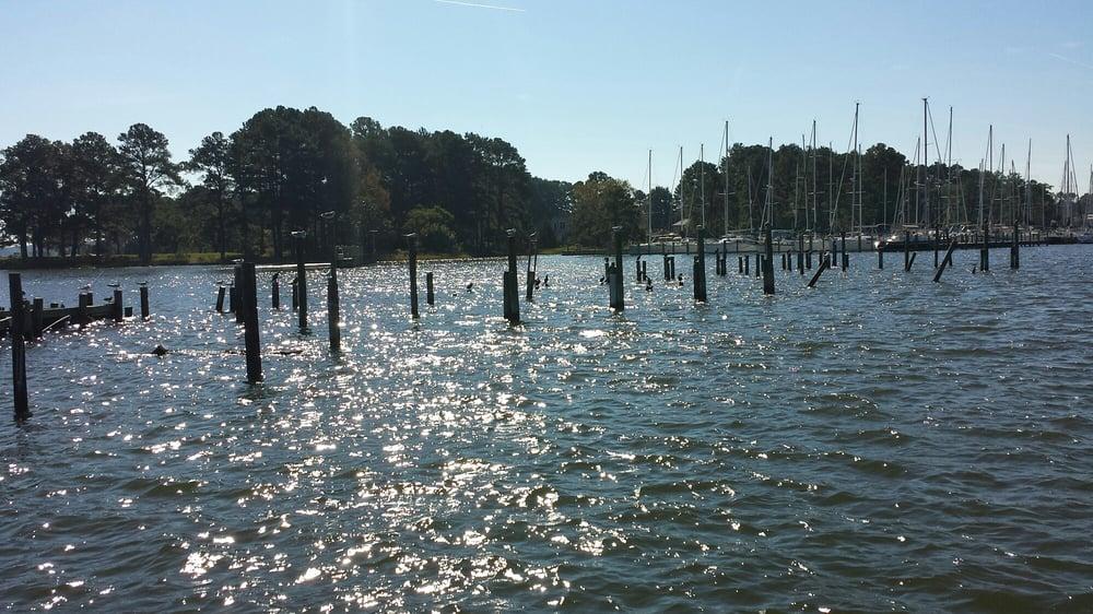 Rappahannock River Oysters: 784 Locklies Creek Rd, Tappahannock, VA