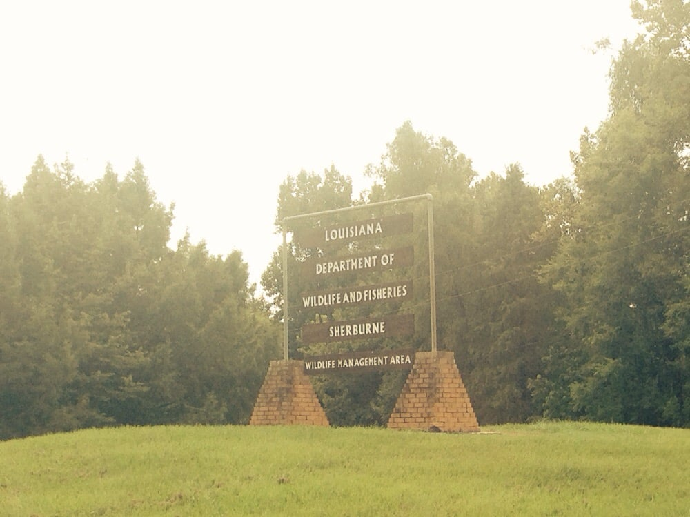 Sherbune Wildlife Management Area: State Rt 975, Krotz Springs, LA