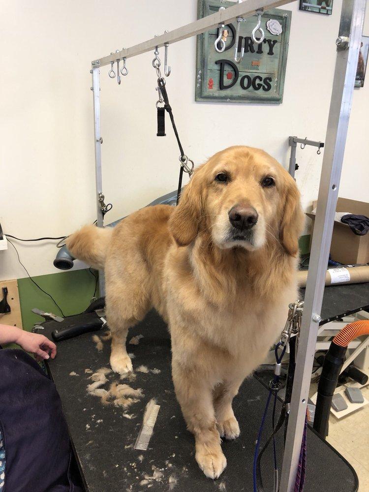 Lisa's Dirty Dogs: N3445 Como Rd, Lake Geneva, WI