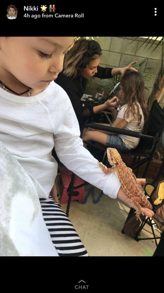 Reptile Finders