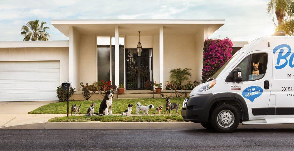 Barkbus Mobile Dog Grooming