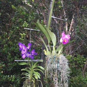Vizcaya Museum Gardens 2039 Photos 445 Reviews Museums 3251 S Miami Ave Coconut Grove