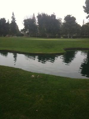 Fig Garden Golf Club 7700 N Van Ness Blvd Fresno, CA Golf Shops ...
