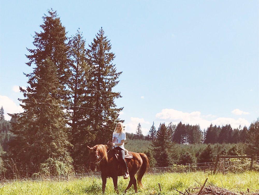 Thunder Ridge Ranch: 42100 Gilbert Ln, Lebanon, OR