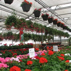 Photo Of Home Grown Gardens Nursery Corvallis Or United States We Specialize
