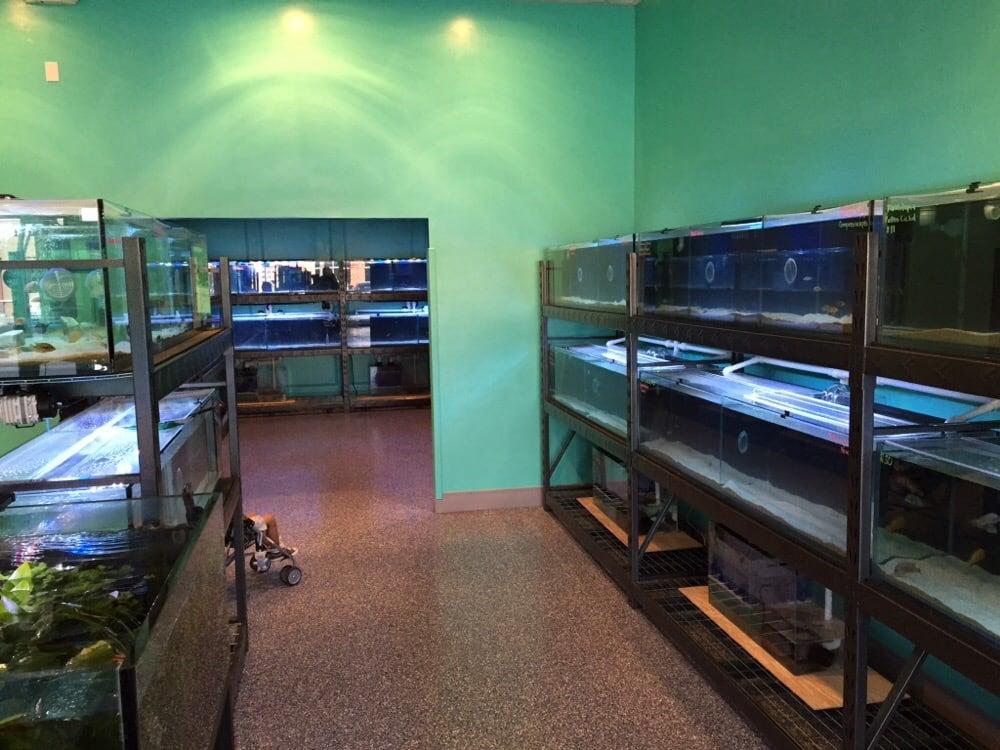 The fish shop closed 20 reviews aquarium maintenance for Fish store las vegas