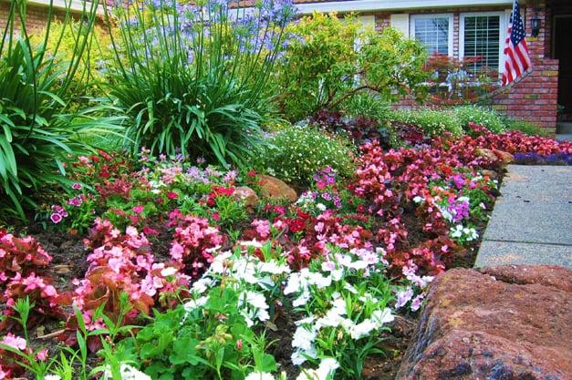 Botanica Landscapes: 5411 Colusa Hwy, Yuba City, CA